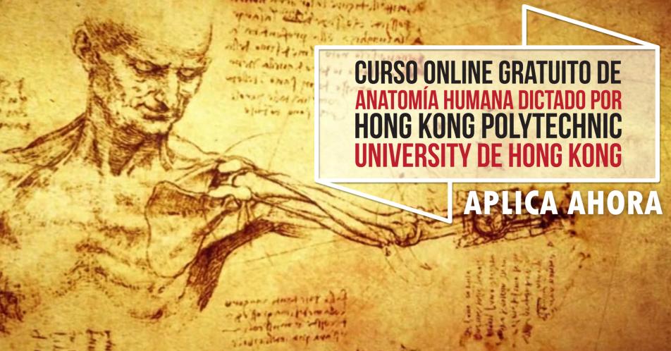 Curso Online Gratis \