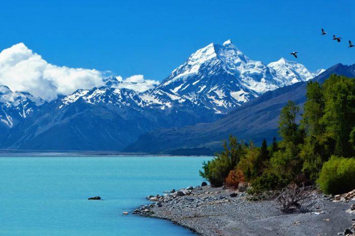 Nueva Zelanda: Becas Para Maestría y Doctorado en Diversos Temas Gobierno de Nueva Zelanda